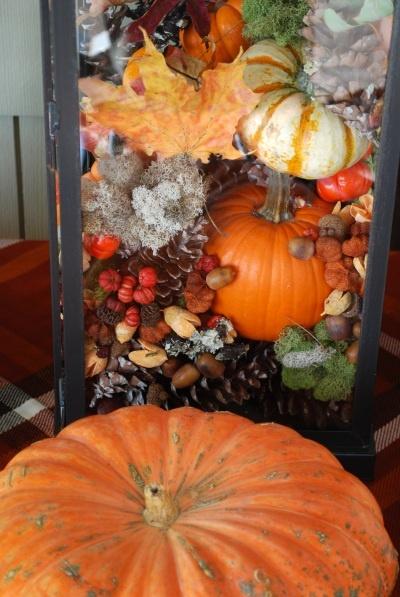 Herfstdecoratie versieren met spulletjes uit het bos for Decoratie herfst