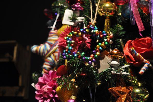 Kerstshow Intratuin Duiven 2013 133