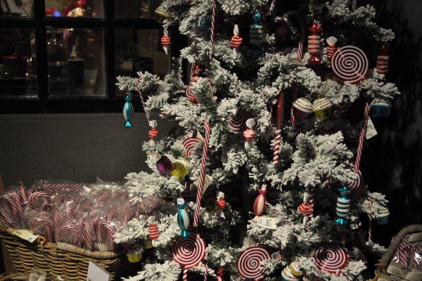 Kerstshow Intratuin Duiven 2013 033