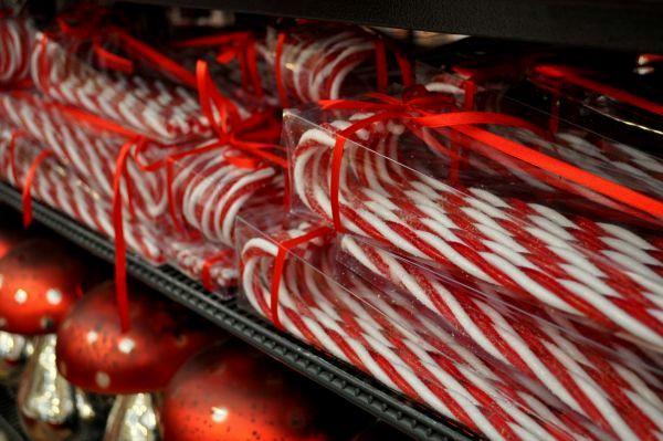 Kerstshow Tuincentrum Osdorp 184