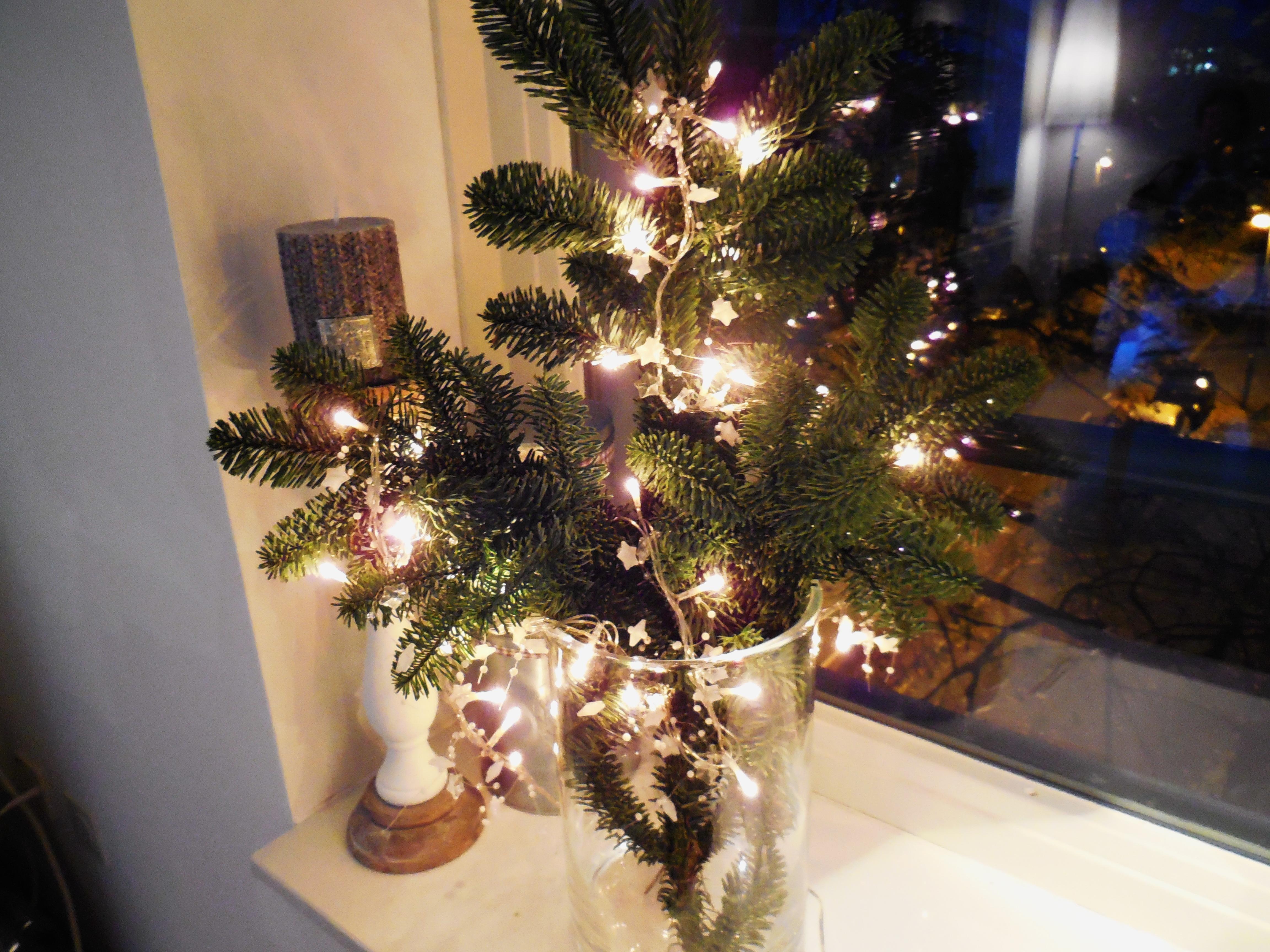 Instant kerstsfeer kersttakken in een vaas for Mini kerstboom action
