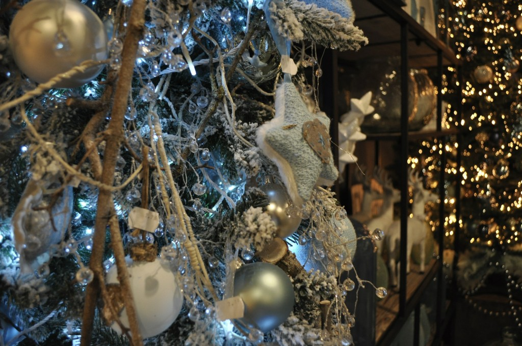 coppelmans nuenen kerst 2014 1