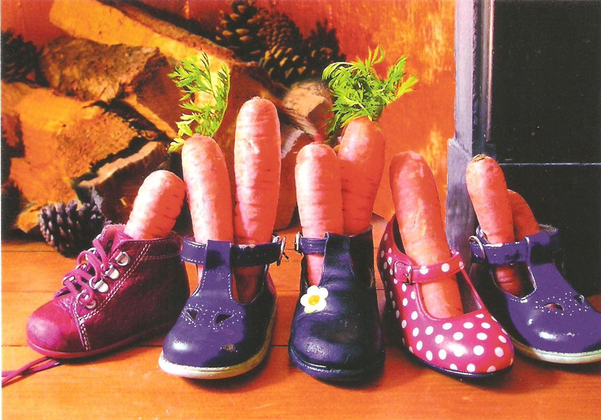 Afbeeldingsresultaat voor schoen voor sinterklaas