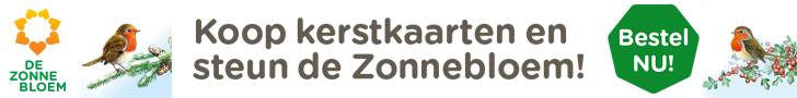 ZB 15058 Banner Kerstkaarten