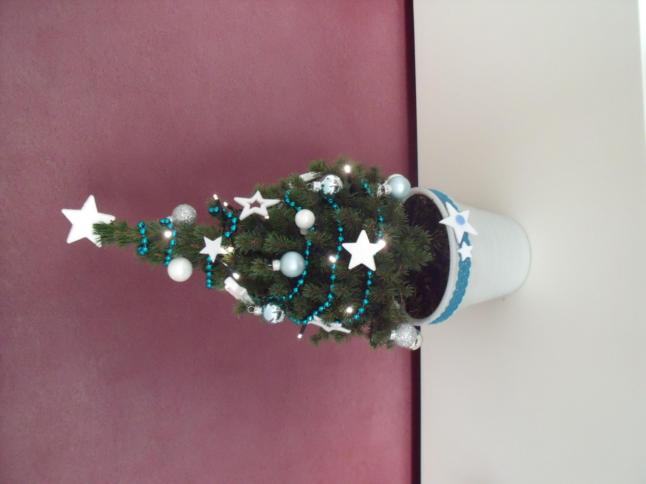 Heb jij de mooiste kerstboom van Nederland & België ...