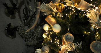 landelijk-kerstboom