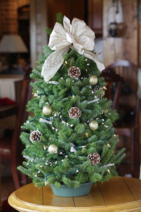 Christmas Tree Toppers 10 Alternatieven Voor De Piek
