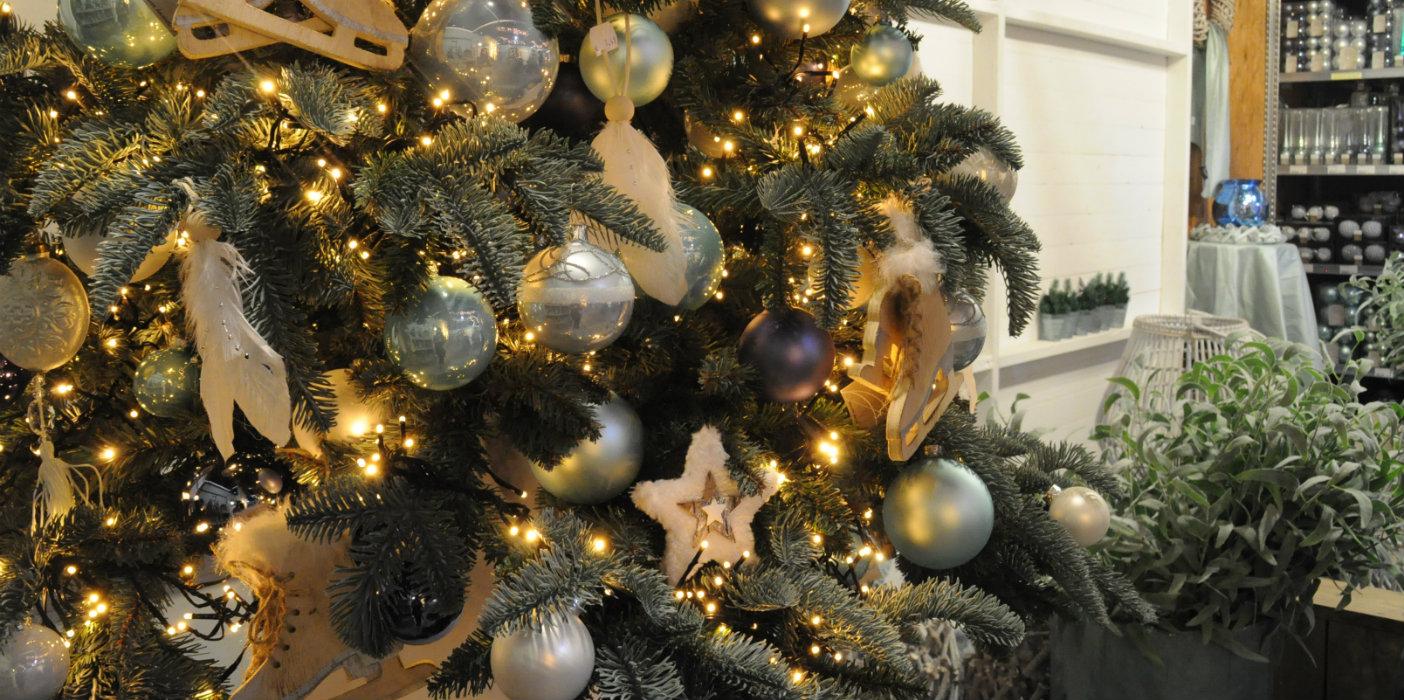 Gezellige Knusse Kerstshow Bij Tuincentrum Coppelmans