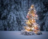 Krijgen we een witte Kerst in 2016?