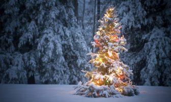 Witte kerst 2016