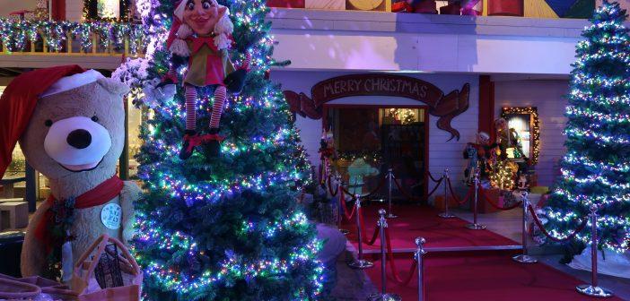 Video-impressie sfeervolle kerstshow Intratuin Halsteren