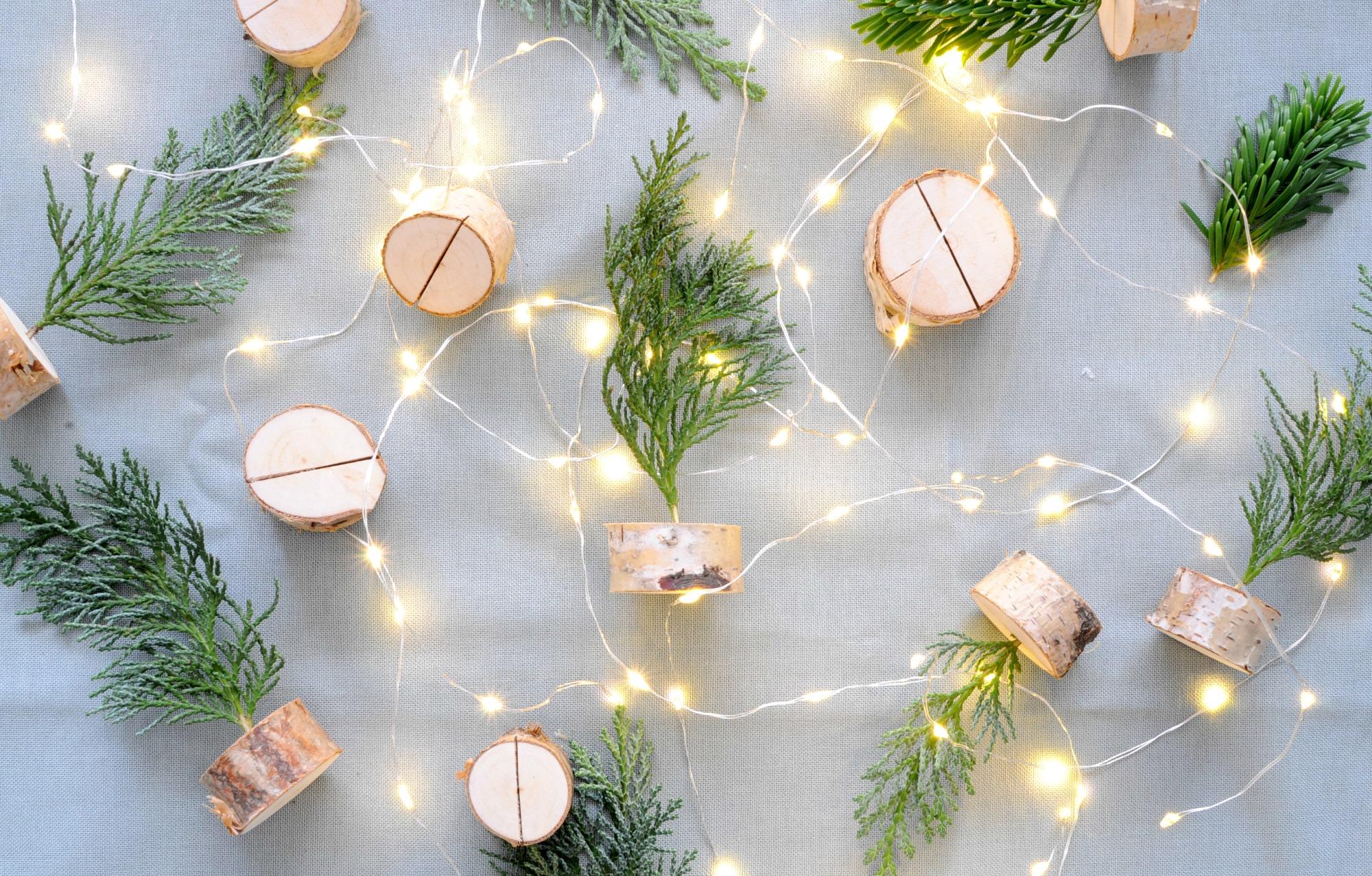 Mini kerstboompjes van Conifeer maken - Christmaholic.nl