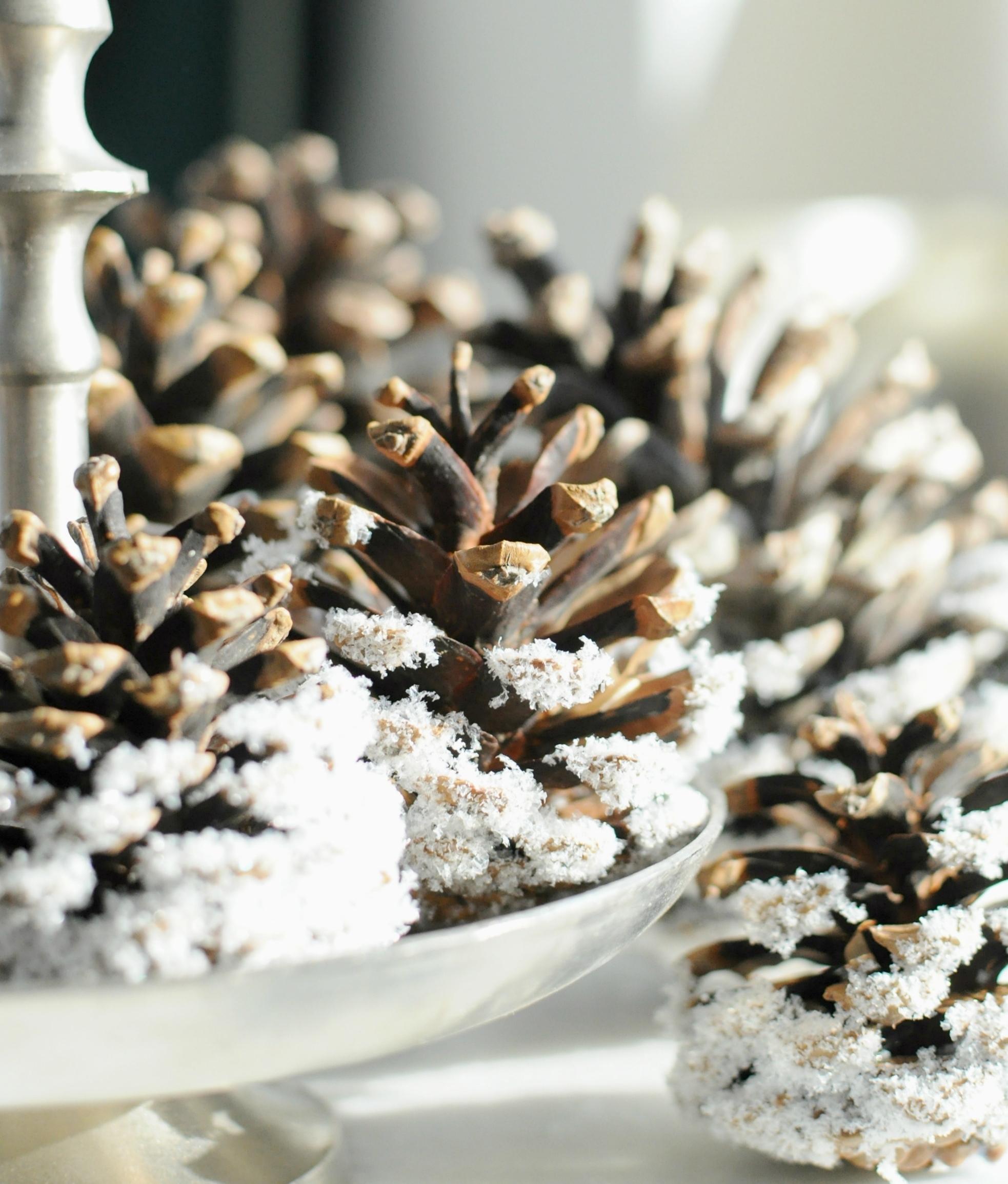 dennenappels met sneeuw nepsneeuw