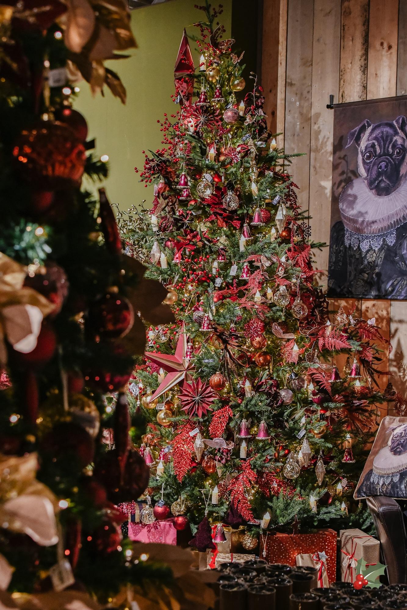 Intratuin Duiven kerstshow 2021
